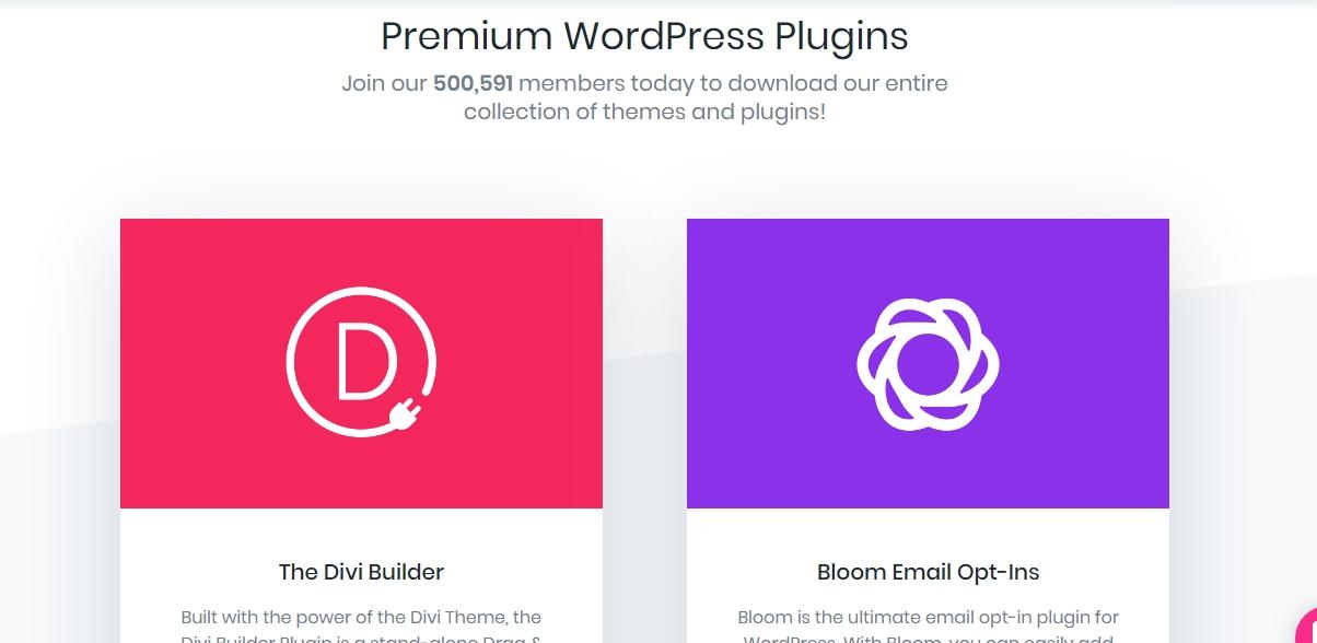Elegant themes review: plugins