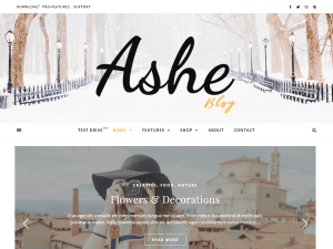 Ashe Free WordPress theme
