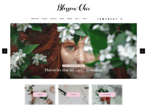 Blossom Free WordPress theme