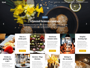Dyad Free WordPress themes