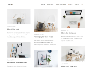 Envy Free WordPress theme