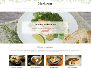 Marjorim Free WordPress theme