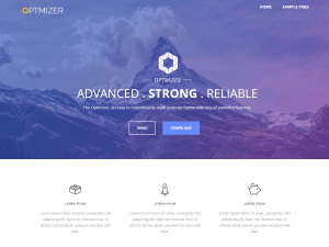 Optimizer Free WordPress theme