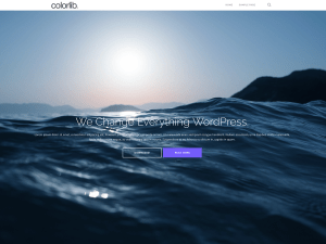 Shapely Free WordPress theme